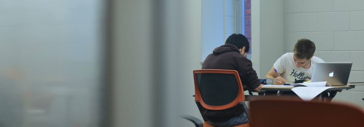 2 students working in the Loewy Library